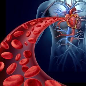 Недостаток кислорода в крови провоцирует множество заболеваний