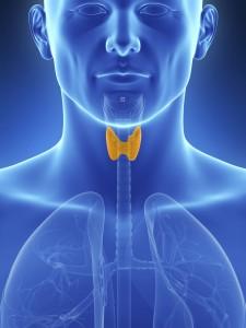 Гипотериоз часто протекает совместно с синдромом обструктивного апноэ сна